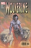 Wolverine (2nd series) #184